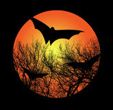 Bats And Branches Against A Moon Illustration Stock Photo