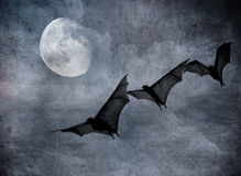 Bats in the dark cloudy sky, halloween background Royalty Free Stock Photography