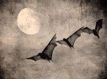 Bats in the dark cloudy sky, perfect halloween background Stock Photo