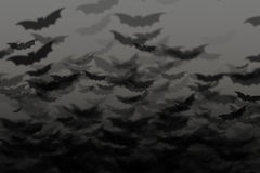 Bats in dark sky, halloween background Stock Photo