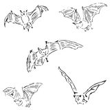 Bats in different positions. Pencil sketch by hand Stock Photo