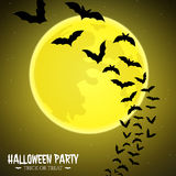 Bats fly over moon Stock Photography