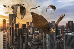 Bats Flying, City, Wildlife Bat