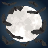 Bats flying over moon Stock Photos