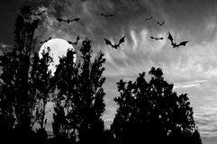 Bats at Halloween moonlight Stock Photography