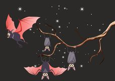 Bats hanging on tree branch Royalty Free Stock Images
