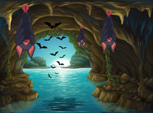 Bats living in the dark cave Stock Photo