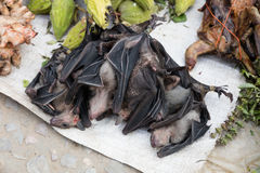 Bats at market Royalty Free Stock Images