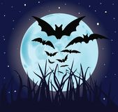 Bats in night Royalty Free Stock Photos