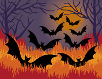 Bats Out of Hell. A Halloween illustration of bats flying out of hell fire Royalty Free Stock Image