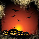 Bats Pumpkin Shows Trick Or Treat And Celebration Royalty Free Stock Image