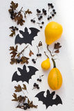 Bats, Pumpkins and Black Hawthorn Berries Stock Images