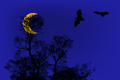 Bats silhouettes and beautiful branch for background usage under Stock Photo