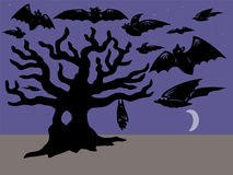 Bats and Tree Stock Image