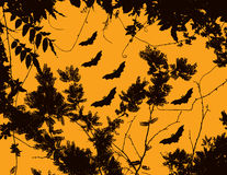 Bats and trees Royalty Free Stock Photography