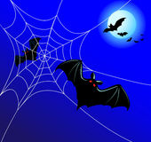 Bats and a web Stock Image