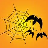 Bats and web Stock Photos