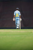 A batsman walking Royalty Free Stock Image