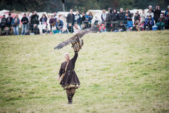 Battaglia 1066 di Hastings Immagini Stock Libere da Diritti