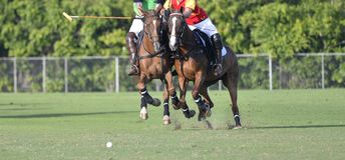 Battaglia di Polo Player del cavallo Immagini Stock Libere da Diritti