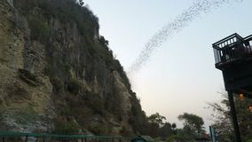 Battambang, Cambodia - Circa February 2018: Bats flying out of their cave at early afternoon