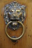 Battente di portello del leone Fotografia Stock