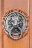 Battente di portello del leone Immagine Stock