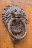 Battente di portello del leone Fotografie Stock