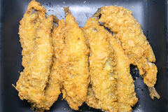 Batter fried fish in egg Royalty Free Stock Images