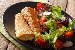 Batter fried hake with fresh tomato salad, radish and lettuce cl. Ose-up on a plate. horizontal Royalty Free Stock Image