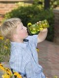 Battere calore v di estate Immagini Stock Libere da Diritti