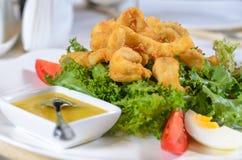 Battered deep fried calamari Stock Photos