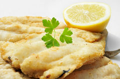 Battered and fried hake Stock Images