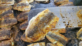 Battered herring Royalty Free Stock Images