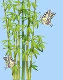 Batterflies en bamboe vector illustratie