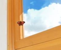 Batterfly sul blocco per grafici Fotografie Stock Libere da Diritti