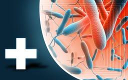 Batteri del colera Fotografie Stock Libere da Diritti