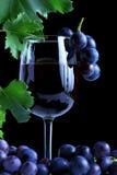 Batterie bleue de raisin et vin rouge photographie stock libre de droits