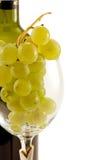 Batterie des raisins dans le verre à vin Images libres de droits
