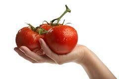 Batterie des tomates rouges dans une main Photographie stock libre de droits