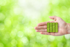 Batterien in der Hand auf grünem Naturhintergrund Stockbilder