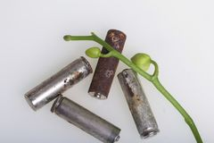Batteries of corrosion. They lie on a white surface, covered with a branch of orchids with unrevealed buds. Environmental protecti. On, recycling of used stock photos