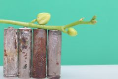 Batteries of corrosion. They stand on a white surface, covered with a branch of orchids with unrevealed buds. Оn a green backgrou. Nd. Environmental stock photo