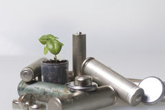Batteries and green sprout. Recycling and disposal of batteries. Care for ecology Stock Image