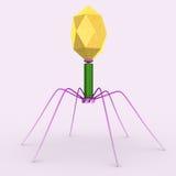 batteriofago Immagine Stock Libera da Diritti