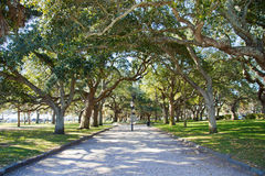 Battery Park - Charleston Stock Images
