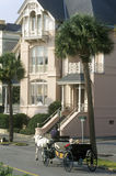 Battery Street and walkway with carriage and historic waterfront home in Charleston, SC Royalty Free Stock Image