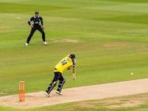 Batteur jouant dans le match de cricket images libres de droits