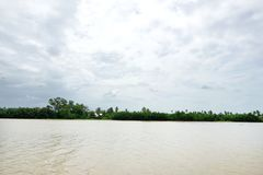 Batti il fiume di Pakong con il cielo, la nuvola e l'albero a Chachoengsao in Tailandia Immagini Stock Libere da Diritti