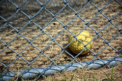 Batting cage ball. Behind a chain link fence Royalty Free Stock Photography
